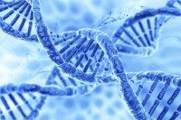 CRISPR-Cas9 is a gene editing tool that has implications in both disease treatment and drug discovery. (Image: iStock)