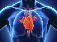 iCardiac Technologies, Inc., is a laboratory for cardiac safety and respiratory services. (Image: iStock/erthuz)