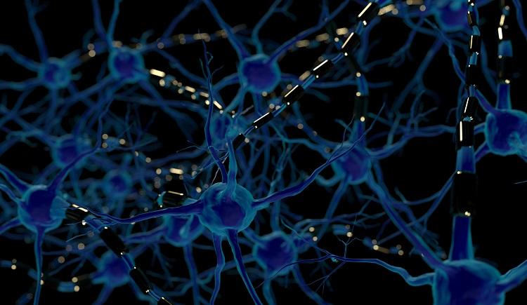 Rare-disease researchers face unique obstacles: Minoryx
