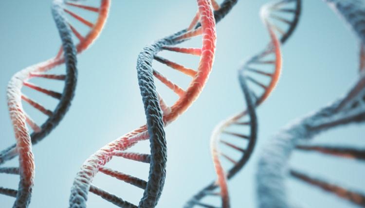 Novartis, Artios cancer discovery deal worth up to $1.3bn